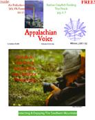 2001 - Issue 3 (December)