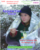 2002 - Issue 5 (December)