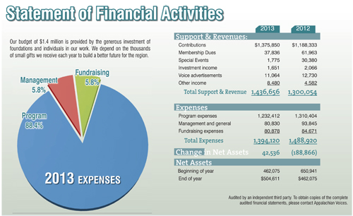 Linked to a Statement of Financial Activities for 2013 in PDF format